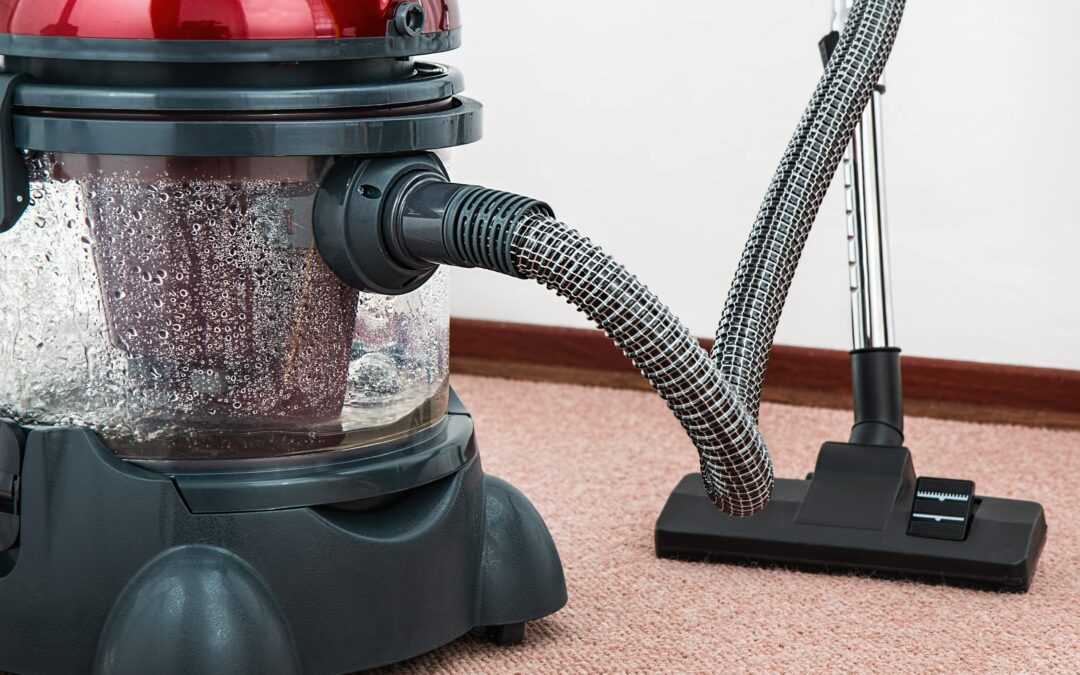 Learn How to Start a Carpet Cleaning Business from Home